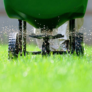 Lawn Fertilization Services in Uxbridge and Stouffville 416-786-7699