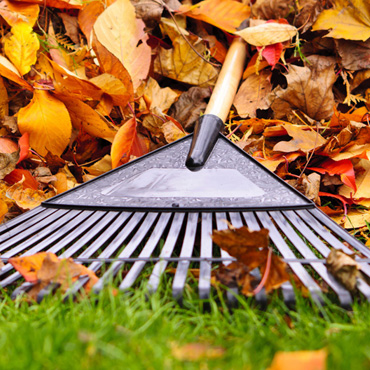 Spring and Fall Cleanup Services in Uxbridge and Stouffville 416-786-7699